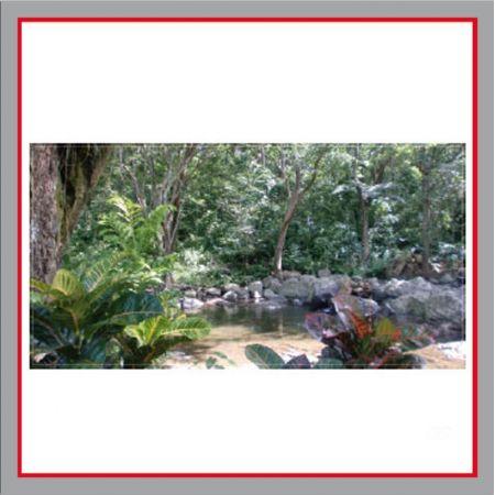 Dschungel Bauzaunplane