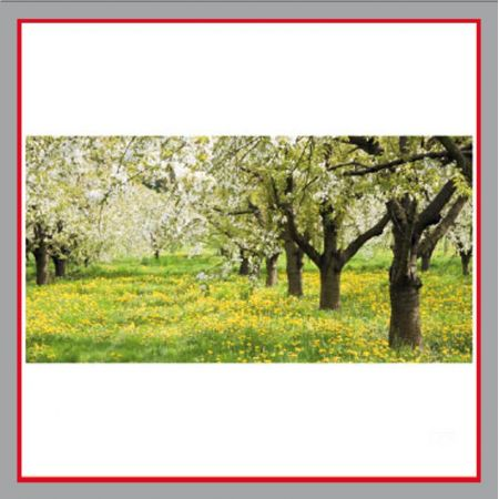 Frühling zu jeder Jahreszeit